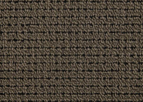 Constantia Carpets - Top Style Fawn